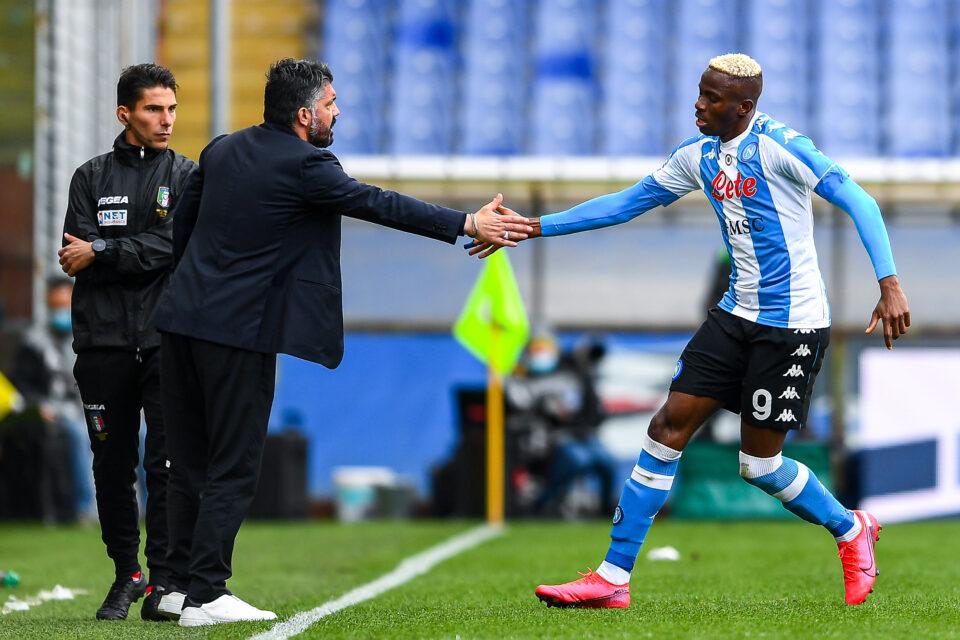 Gattuso si congratula con Osihmen